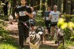 course-7km