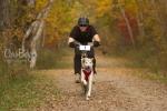 scaq-bikejoring-1