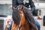 cowboy-extremes-2