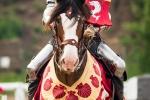 Tournoi-des-chevaliers-9